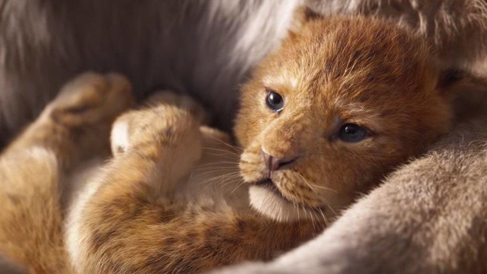 König der Löwen | Beyoncé: Neue Single