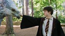 Fantasy-Quiz: Aus welchem Film kennst du diese 15 Fabelwesen?