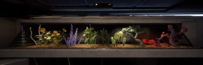 Star Wars Jedi Fallen Order: Alle Pflanzensamen für das Terrarium - Fundorte