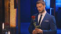 """""""Der Bachelor"""" – Nach der letzten Rose: Niko wird von Fans als schlimmster Bachelor beschimpft"""