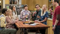 """The Big Bang Theory"": Alle 12 Staffeln im Stream sehen"