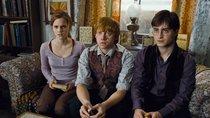 """""""Harry Potter"""": US-Schule verbannt die Buchreihe aus Schulbibliothek"""