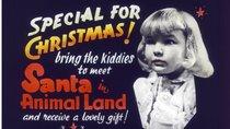 Die schönsten Weihnachtsfilme aller Zeiten: Klassiker aus allen Jahrzehnten