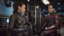 """Beliebtes MCU-Trio endgültig gesprengt? Marvel-Star unsicher über """"Ant-Man 3""""-Rückkehr"""