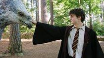 """""""Harry Potter"""" Hörbücher und wo sie zu finden sind"""