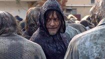 """""""Es steckt mehr dahinter"""": Norman Reedus klärt """"The Walking Dead""""-Fans über Daryls Beziehung auf"""
