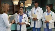 """""""Dr. Doogie Kamealoha"""" Staffel 2: Bekommt die junge Ärztin eine Fortsetzung?"""