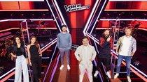 """""""The Voice of Germany"""" 2020: Finale heute im TV bei Sat.1 und Live-Stream sehen"""