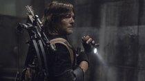 """""""The Walking Dead"""" Staffel 11: Neue Folgen noch vor Disney+-Release streamen"""