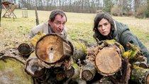 """Trotz traurigen Serien-Todes: Beliebter """"Tatort"""" geht doch weiter"""