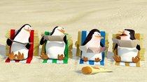 """""""Die Pinguine aus Madagascar""""-Namen: So heißt die tierische Elitetruppe aus dem New Yorker Zoo"""