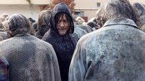 """Letzte """"The Walking Dead""""-Staffel hat begonnen: Seht das erste Bild der finalen Folgen"""