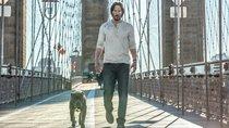 """Noch ein Bösewicht für """"John Wick 4""""? Fortsetzung verpflichtet Hollywood-Star mit Schurken-Abo"""