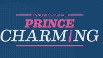 """""""Prince Charming"""" Staffel 2 – Das sind die 20 Kandidaten"""