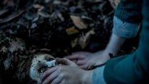 """""""Brahms: The Boy 2"""": Neuer Trailer bringt die Horror-Puppe zurück"""