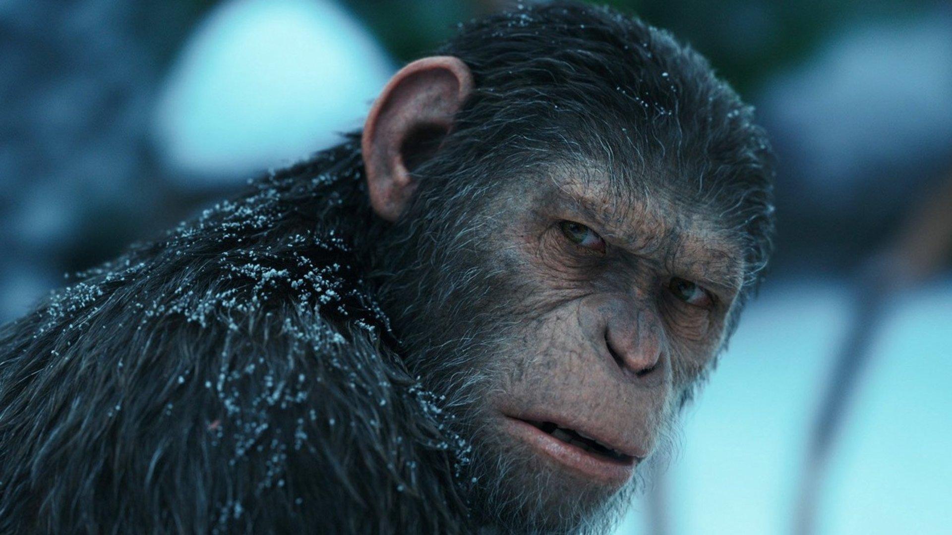 Planet Der Affen Alle Teile