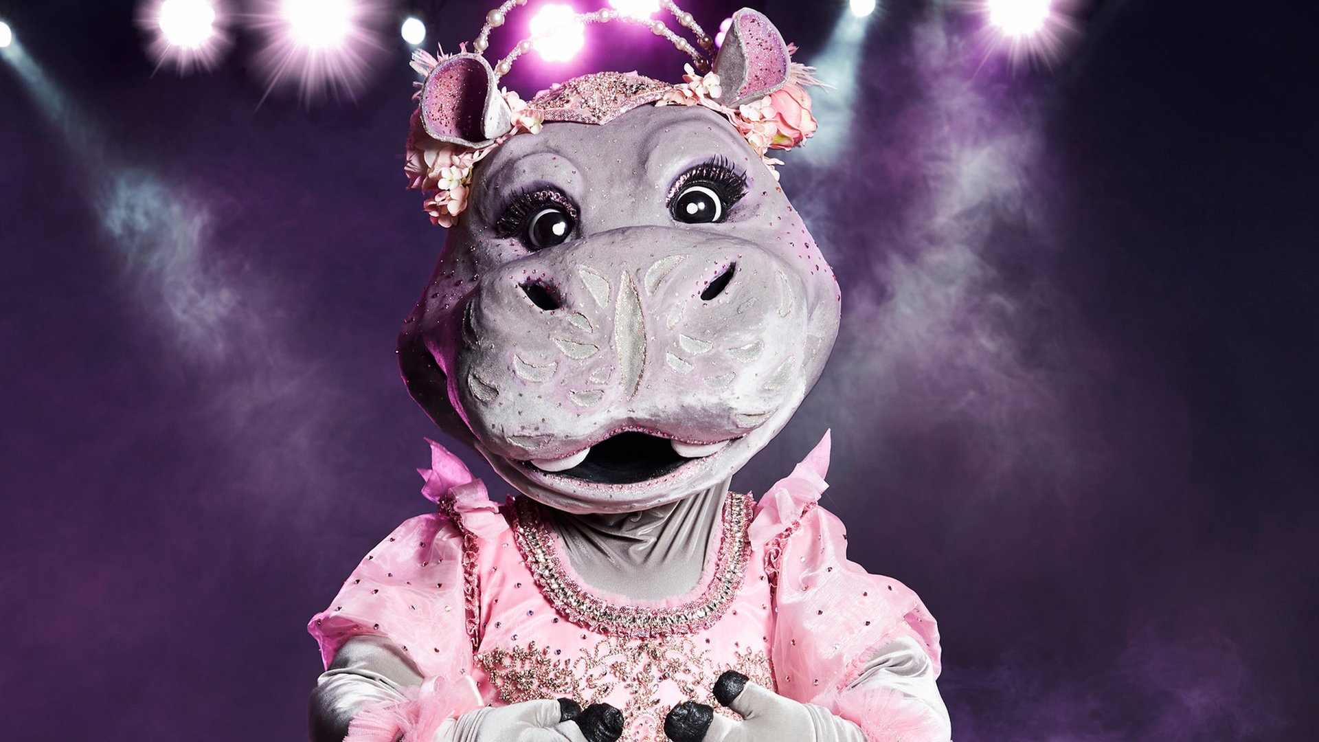 The Masked Singer Indizien