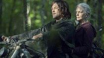 """The Walking Dead"": Daryl und Carol kriegen eigene Serie – Alle Infos"