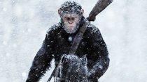 """""""Planet der Affen 4"""": Neuer Regisseur bestätigt, dass uns eine Fortsetzung und kein Reboot erwartet"""