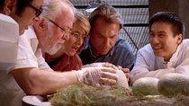 """""""Jurassic World 3"""": Auf diese Figur der Dino-Reihe ist der Regisseur besonders stolz"""