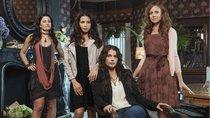 """Zaubern die """"Witches of East End"""" auf Netflix?"""