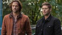"""Emotionaler Abschied von """"Supernatural"""": So reagieren die Stars auf den letzten Drehtag"""