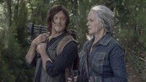 """The Walking Dead"": Daryl-Darsteller verrät erste Ideen zur Spin-off-Serie"