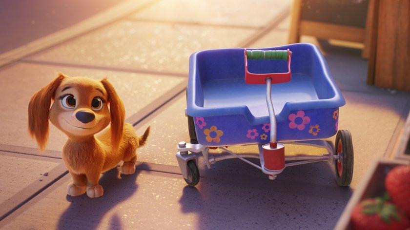 """""""PAW Patrol"""": Neuer Hund Liberty unterstützt im Kinofilm den Rettungstrupp"""