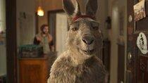 """Endlich: """"Die Känguru-Chroniken"""" kehrt zurück ins Kino – mit 3D-Einstellung"""