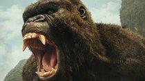 "King Kong in Ketten: Erstes Video zum ultimativen Kino-Erlebnis ""Godzilla vs Kong"""