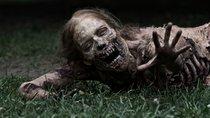 """Nach brutalem Tod in letzter """"The Walking Dead""""-Folge: Star deutet Rückkehr an"""