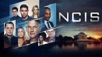 """""""NCIS"""" Staffel 18: Wann ist der TV-Start in Deutschland bei Sat.1?"""