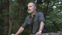 """""""The Walking Dead""""-Filme mit Rick Grimes bringen auch Michonne zurück"""