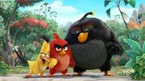 """""""Angry Birds 3"""": Wird es eine Fortsetzung geben?"""