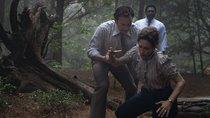 """""""Conjuring 3""""-Regisseur verrät: Darum unterscheidet sich der Horrorfilm deutlich von den Vorgängern"""