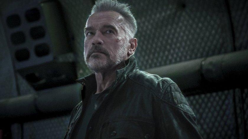 Arnold Schwarzenegger rettet letztes Projekt von Marvel-Legende Stan Lee