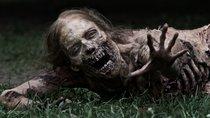 """Das kann nicht ihr Ernst sein: """"The Walking Dead: World Beyond"""" nennt Grund für Zombie-Seuche"""