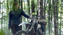 """""""The Walking Dead"""" Staffel 11 Start bekannt: Handlung, Trailer und Infos zum Finale"""