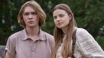 """Erster Trailer zu """"Eine wie Alaska"""" vom """"Das Schicksal ist ein mieser Verräter""""-Autor"""