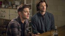 """""""Supernatural"""" Ende: So verabschiedet sich die Serie nach 15 Jahren"""