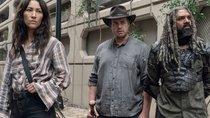 """Aus für König Ezekiel: """"The Walking Dead""""-Star dachte, seine Figur muss sterben"""