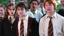 """""""Harry Potter"""": Mögliche Serie spaltet die Fans"""