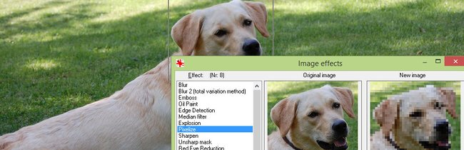 Windows 10: Die 25 wichtigsten Programme