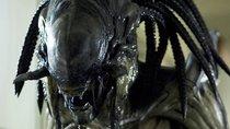 Alien und Predator sind jetzt Teil der Marvel-Comic-Welt