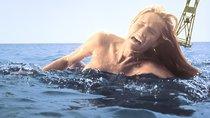 """""""Der weiße Hai 5"""": Bekommen wir noch eine Fortsetzung?"""